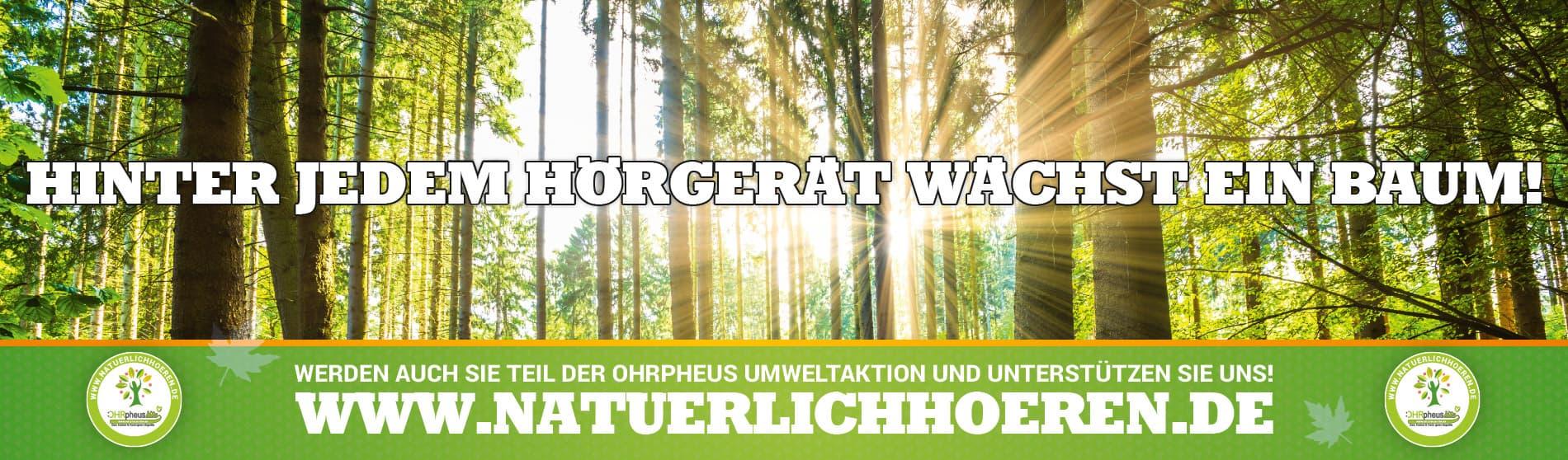 OHRpheus lite Umweltaktion Sonne im Wald